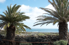 the view of the ocean from Jameos
