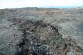 an old lava run