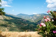 amazing valley