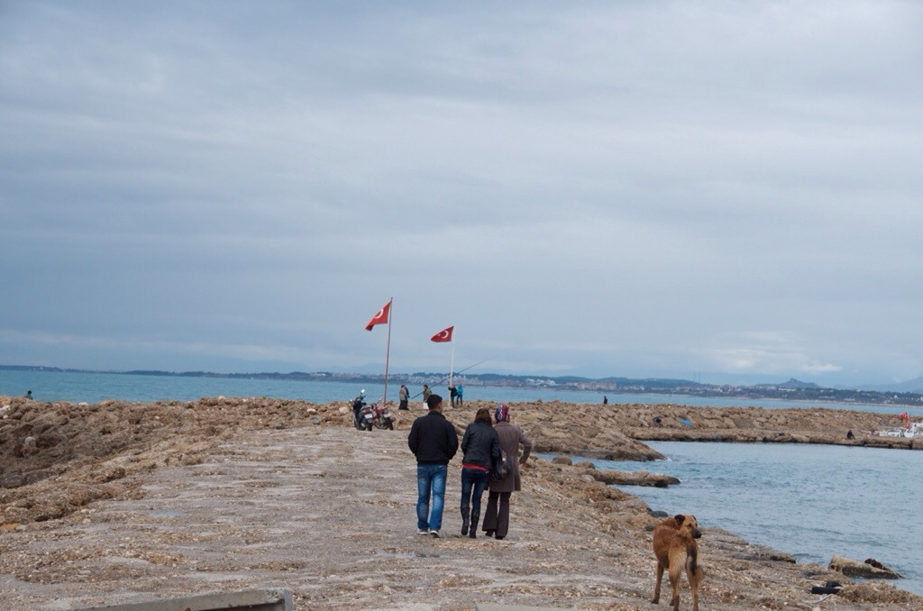 Everybody enjoys a walk on the jetty