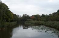 duckpond at De Kas